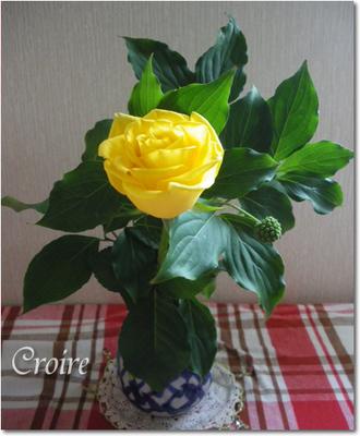 0621-flower-4.jpg