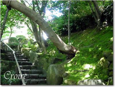 hokokuji-22.jpg